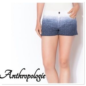 ANTHROPOLOGIE Ombre Blu Pepper Denim Shorts Medium